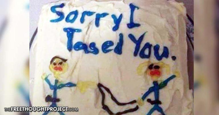 Sorry I Tased You cake.