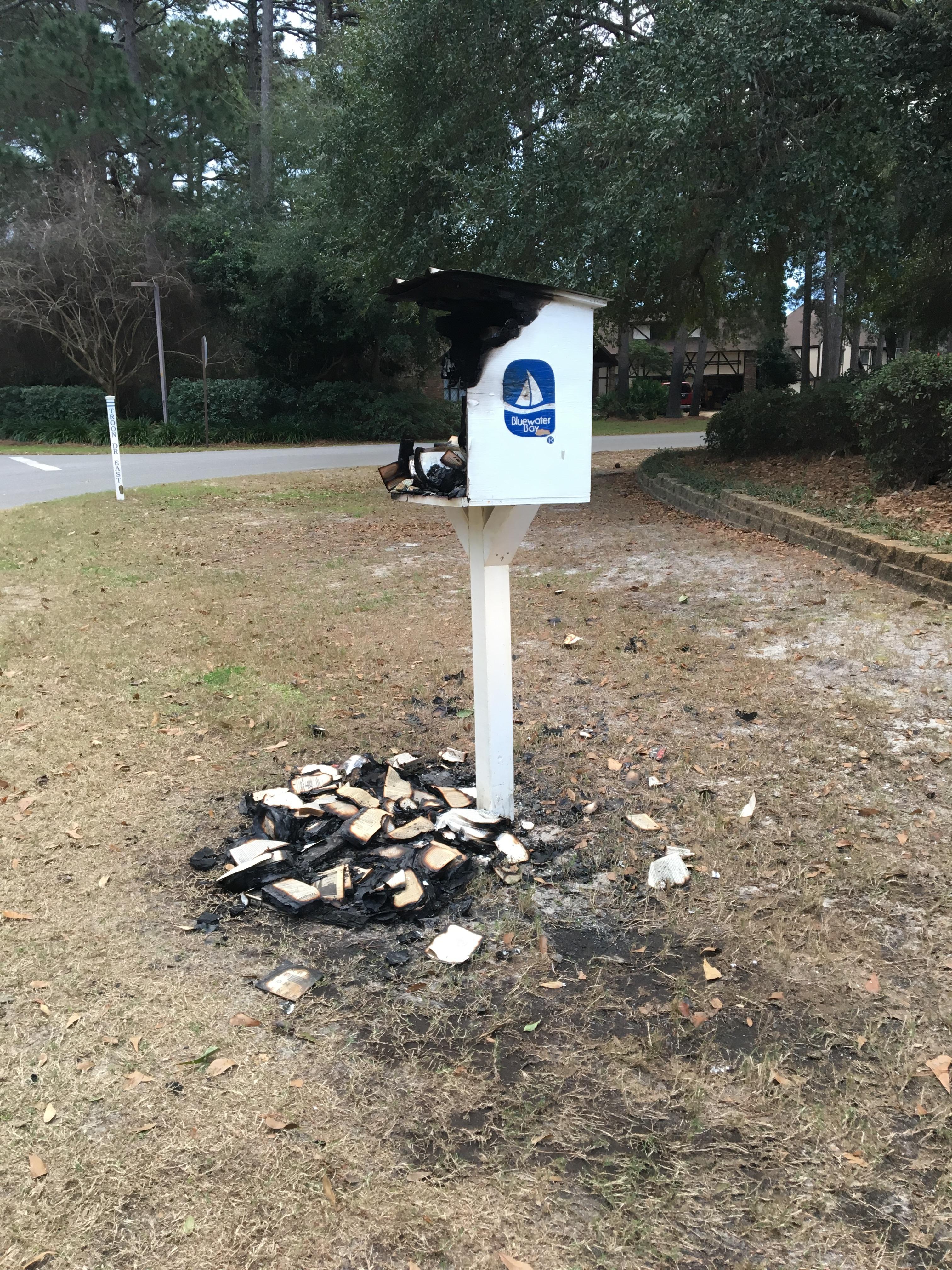 Burned Little Library