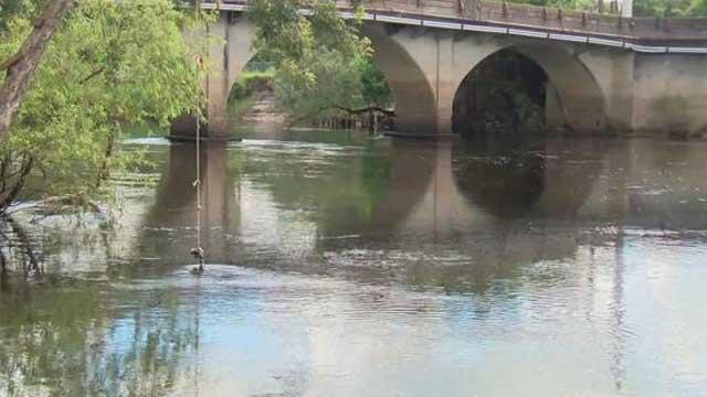 Peace River Gator Attack