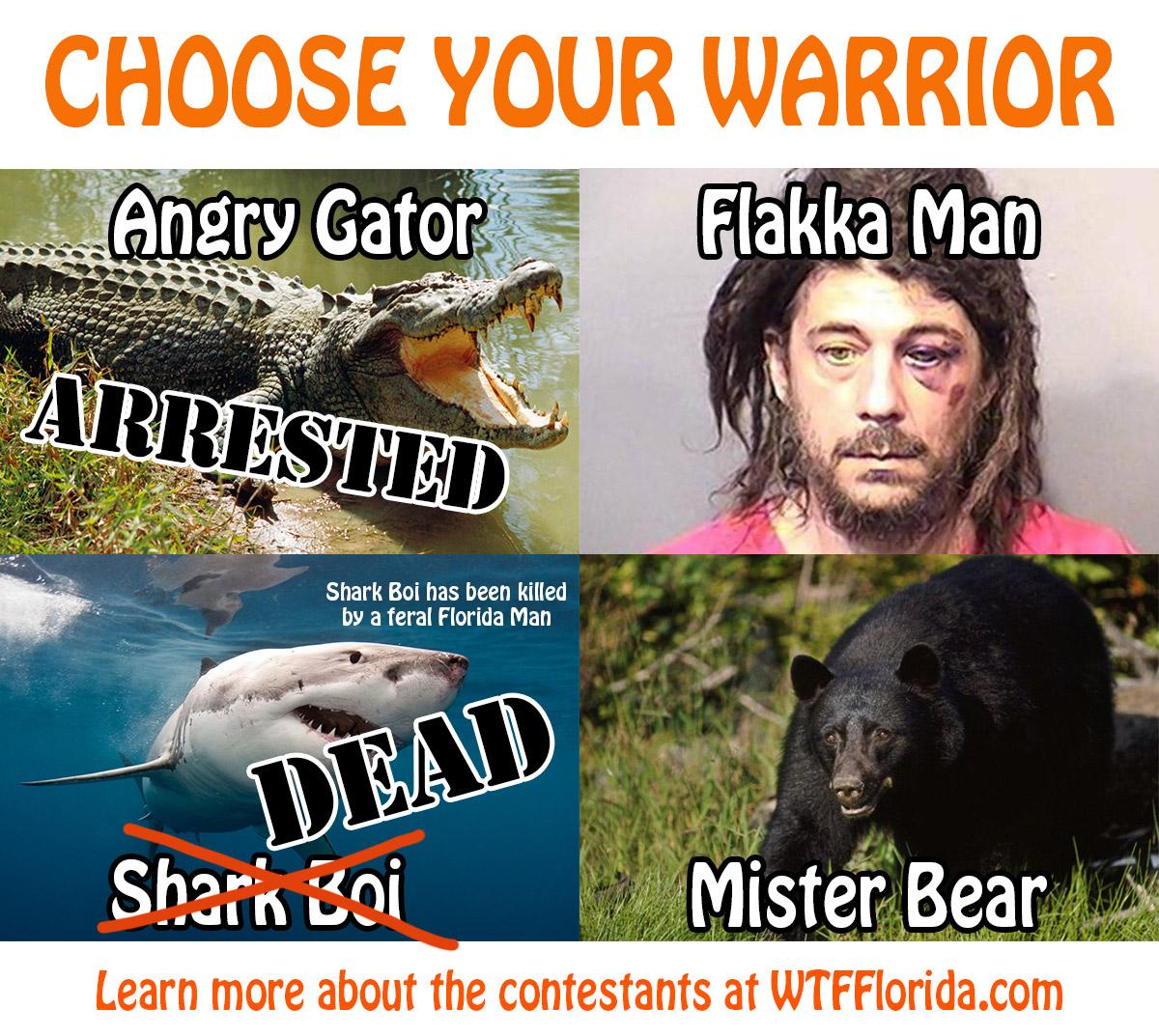 ChooseWarrior3