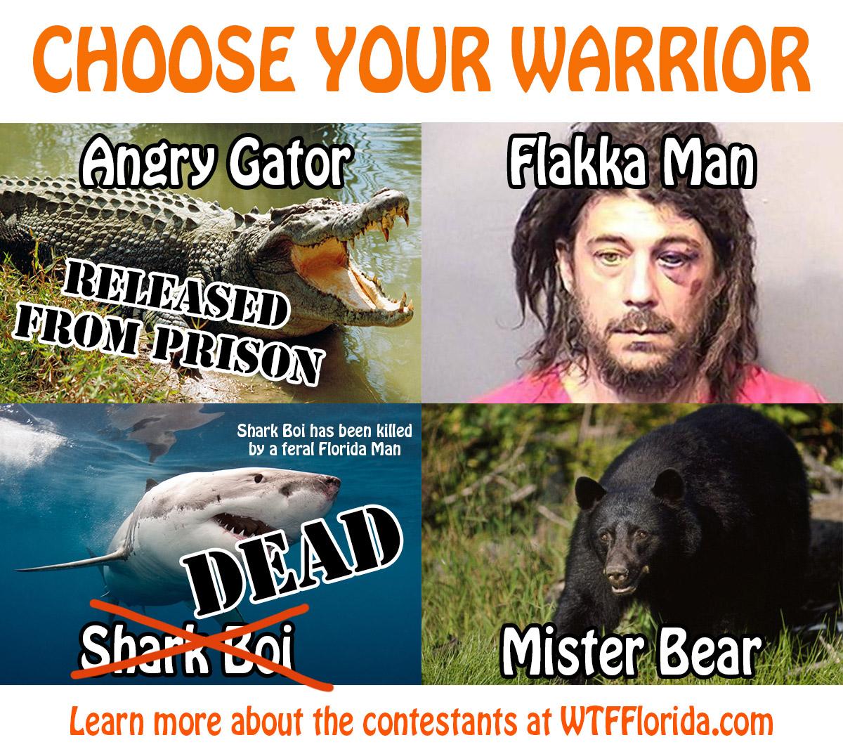 ChooseWarrior4