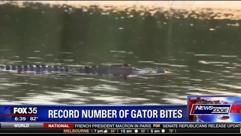 gator bites 2017
