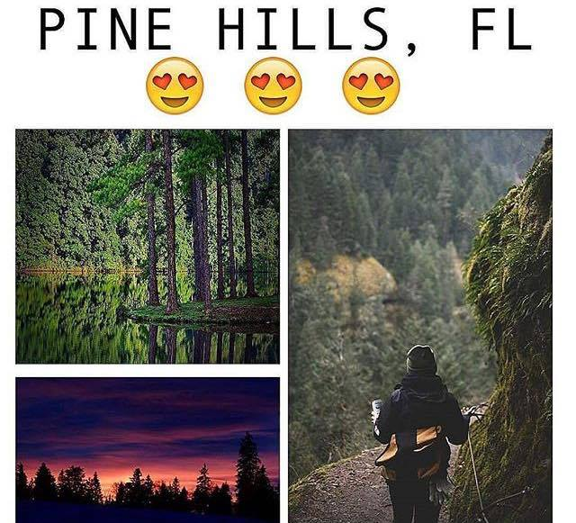 pine-hills-trail