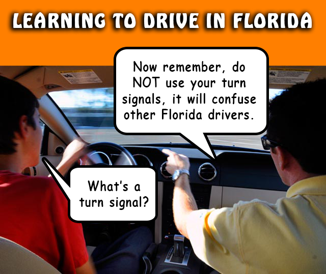 Learning to Drive in Florida