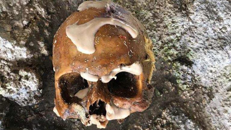 080717+human+skull+found+florida+keys