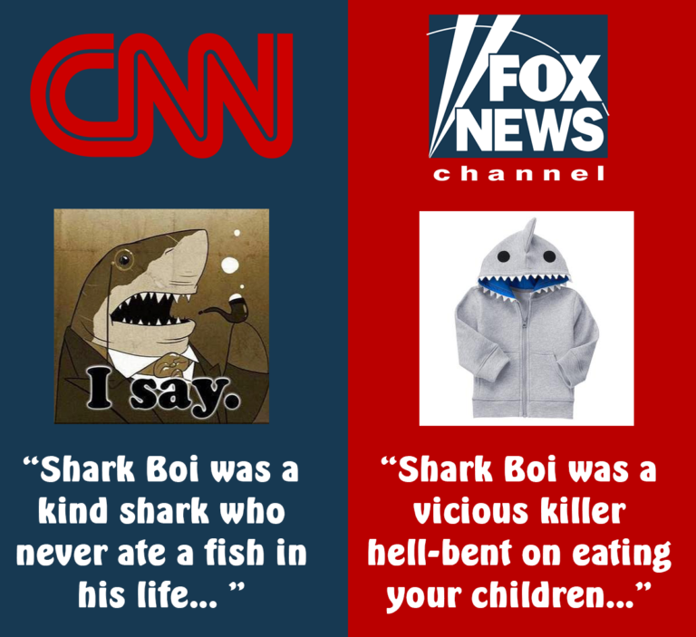 cnn-fox-news