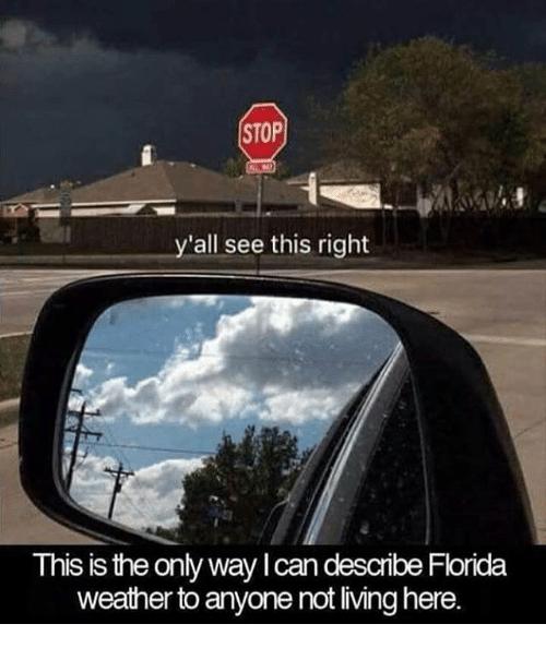describing weather in florida
