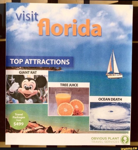 visit florida top attractions