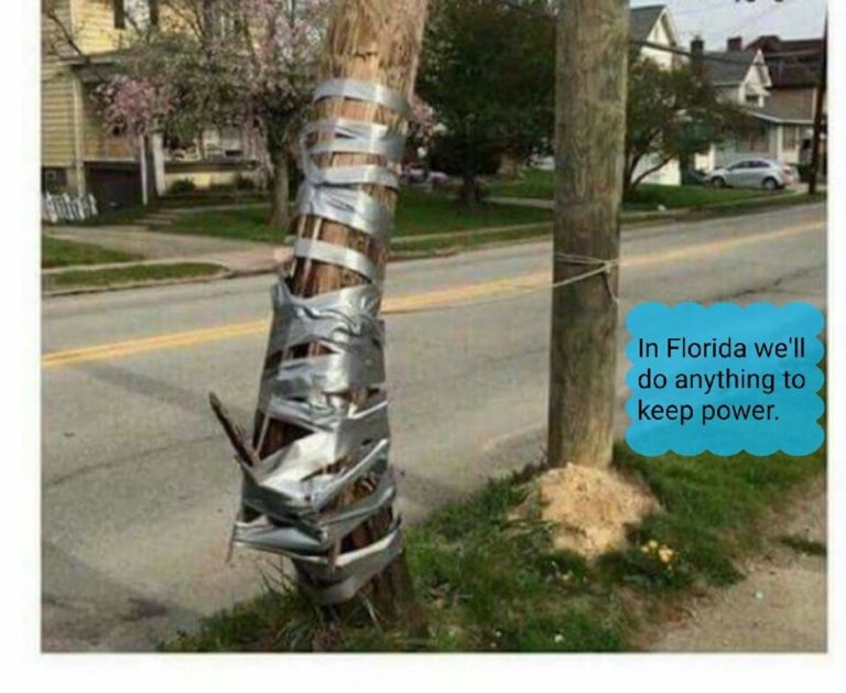 power-pole-irma