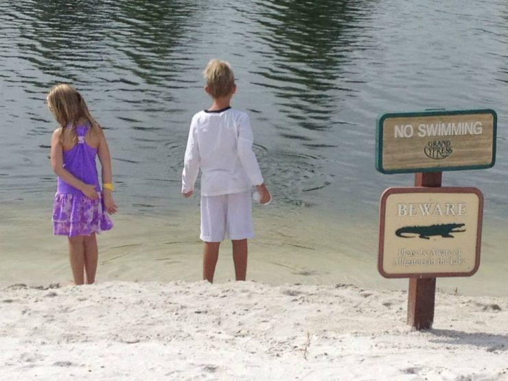 Hotel Gators