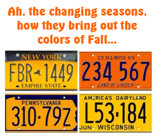 fall seasons license plates