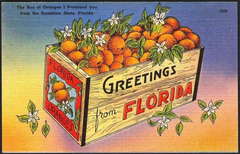 box-of-oranges-postcard