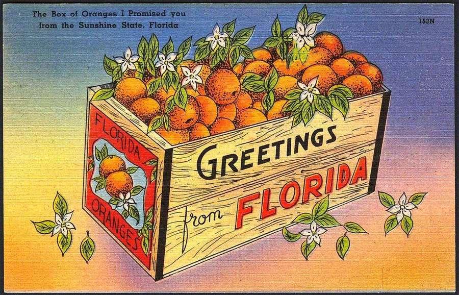 box-of-oranges-postcard