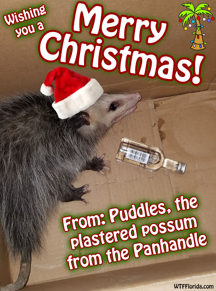 puddles-christmas