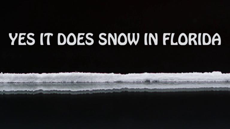 snow-florida