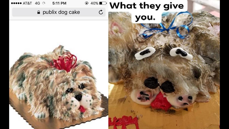 Publix Dog Cake