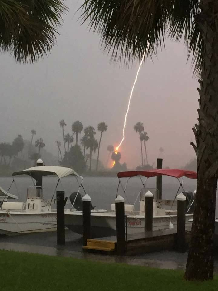 Lightning striking a palm tree in Citrus County