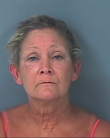 Woman arrested during naked swim in canal